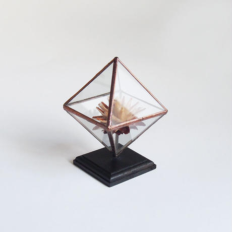 mini terrarium/regular octahedron/antique