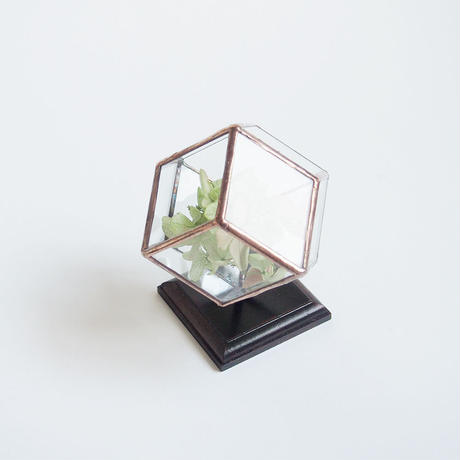 mini terrarium/rhombic dodecahedron/antique