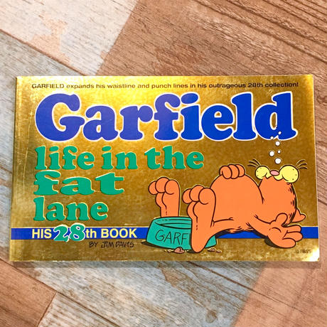 Garfield Comic 28
