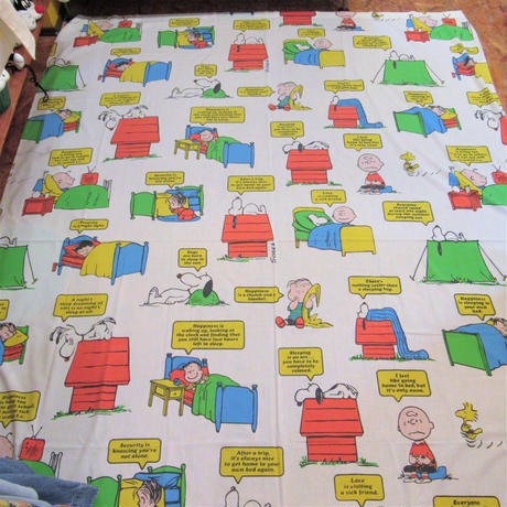 Peanuts Sheet  Bed time