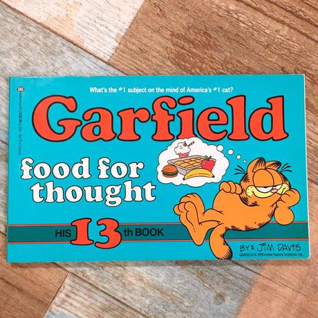 Garfield Comic 13