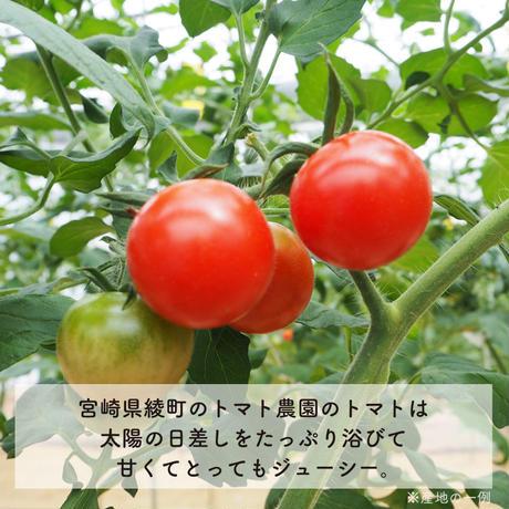 7ヶ月頃〜 おうちごはんセット「チキンと3種の野菜のトマトリゾット」