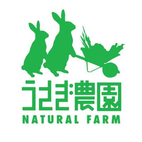 数量限定! てづかみ食べ野菜スティック うさぎ農園の「カラフルじゃがいも」