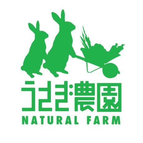 数量限定! てづかみ食べ野菜スティック うさぎ農園の「カラフル人参」