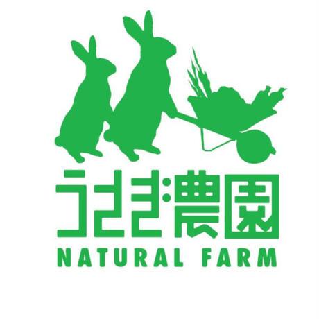 数量限定!うさぎ農園のカラフル人参ペースト5袋セット