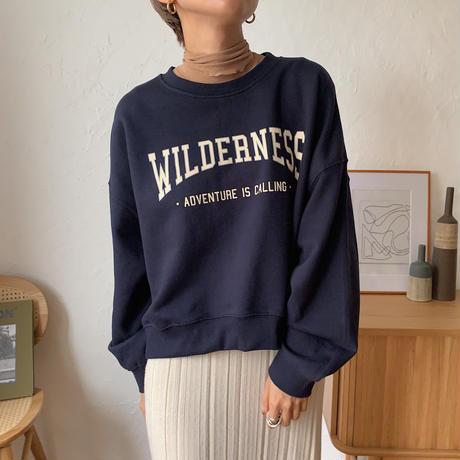 《予約販売》WILDERNESS mtm/3colors_nt0632