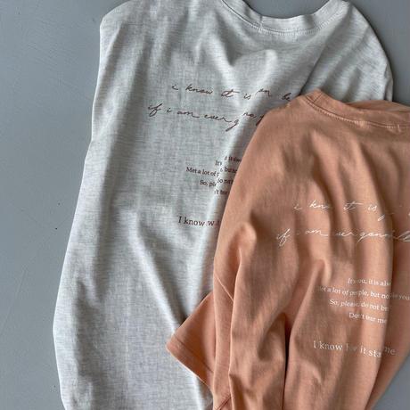 《予約販売》embroidery tee/2colors_nt0983