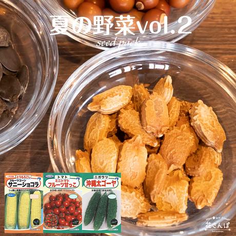 夏の野菜セットvol.2(とうもろこし/トマト/ニガウリ) / 送料込 種セット 27g ギフト