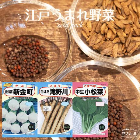 江戸生まれ野菜セット(かぶ/ごぼう/こまつな) / 送料込 種セット 30g ギフト