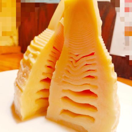 【期間限定販売】【セットにプラス】追加で10! 竹の子餃子  10ヶ