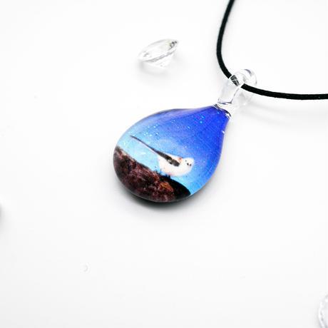 SHIMAENAGA BLUE  [NDM-B-120]