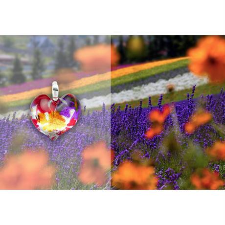 ハートSサイズ colorful [NHS-R-010]