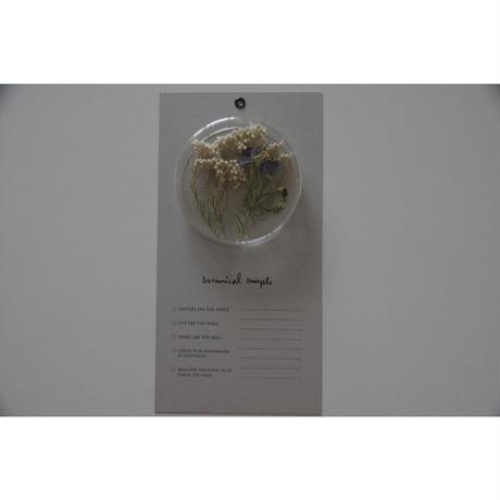 message flower /  rice flower× delphinium
