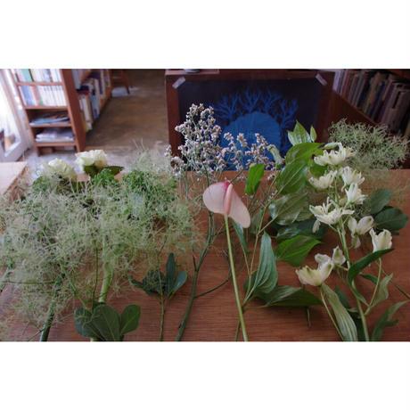 ◼︎ご来店お引取り専用◼︎6/25(fri)26(sat)限定 お任せ生花の束/fresh flowers