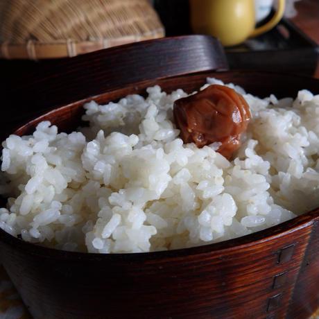 自然栽培米【喜び米】 ささしぐれ   [5kg]                        2018年度産