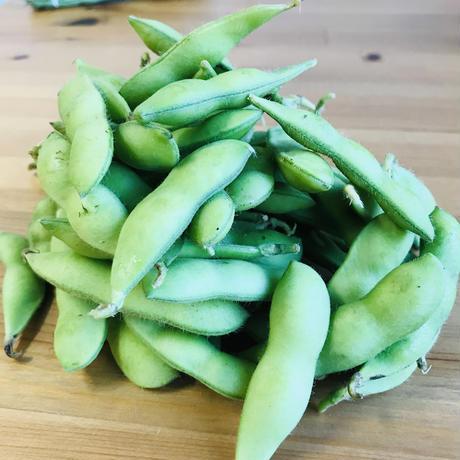 枝豆1袋・250g(野瀬農園:高根町)