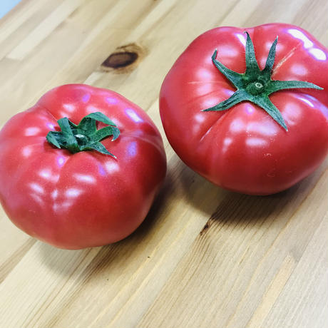 大玉トマト400g(2〜3個)(田中農園:船橋市旭町)