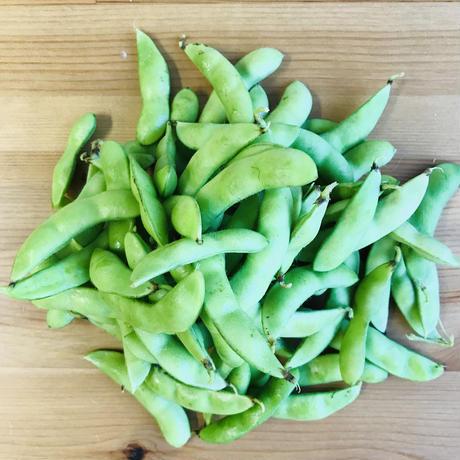 枝豆1袋・300g(カンシロー農園:船橋市印内)