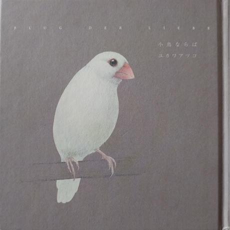 『小鳥ならば』(ユカワアツコ)