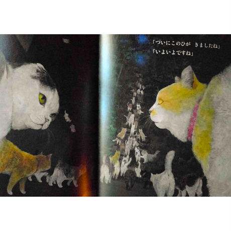町田尚子『ネコヅメのよる』サイン本