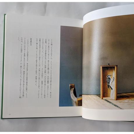 『草木鳥鳥文様』(梨木香歩文・ユカワアツコ絵・長島有里枝写真)