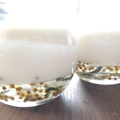 soy & ミモザ グラス L