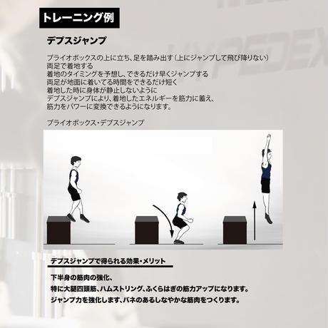 【送料込み】HDXプライオボックス