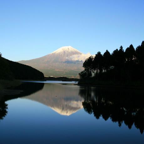 【完売致しました】はがきサイズ おばけパズル (富士山麓ヒノキ無垢材5mm厚)
