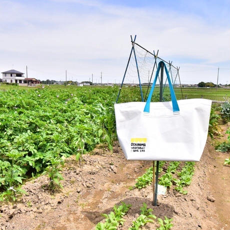 OCHANOMA VEGETABLE  BAG ZAB┊normal size