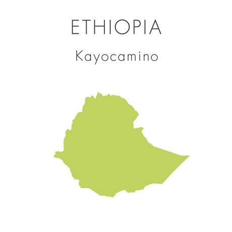 【エチオピア】カヨカミノ - 100g