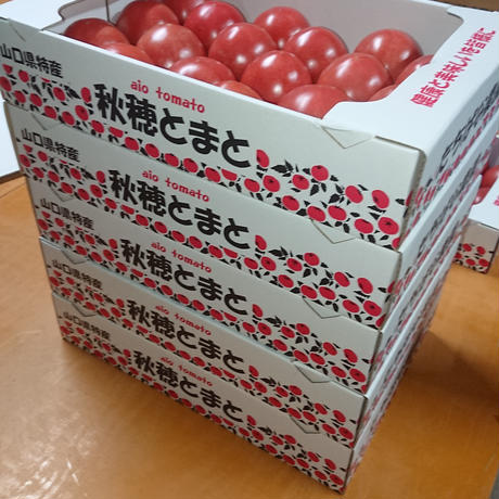 【順次発送】秋穂とまと(Lサイズ)4Kg×1箱