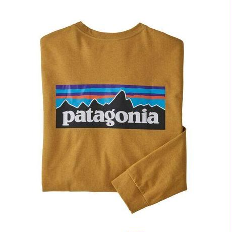 Patagonia(パタゴニア) メンズ・ロングスリーブ・P-6ロゴ・レスポンシビリティー #38518  (HAGL)