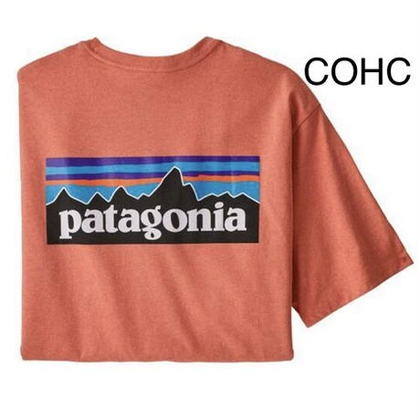 Patagonia(パタゴニア) メンズ・P-6ロゴ・レスポンシビリティー#38504 [商品管理番号:10&60-pt38504]