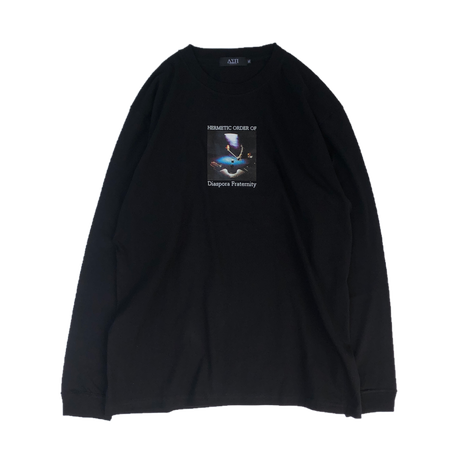 Diaspora skateboards / Aint Nothin L/S Tee (black)