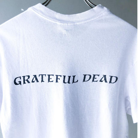 "GREATFUL DEAD ""BLUES FOR ALLAH"" Tee (spice)"