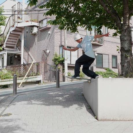 "Diaspora skateboards  / "" SYMBIOSIS "" Complete set"