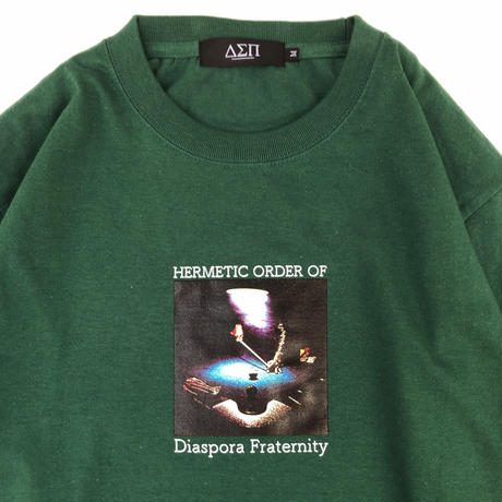 Diaspora skateboards / Aint Nothin L/S Tee (ivy green)