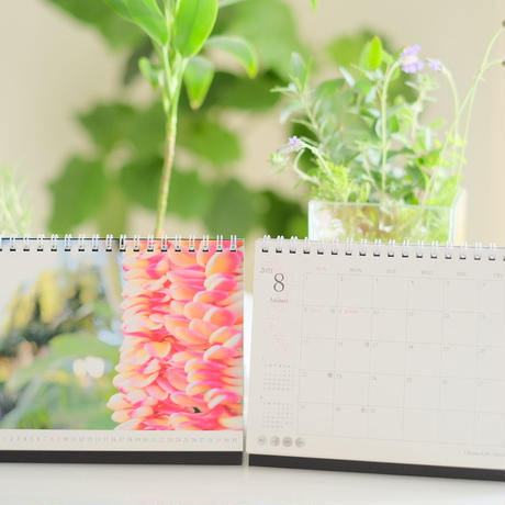 Hawaii Calendar 2021(卓上カレンダー)