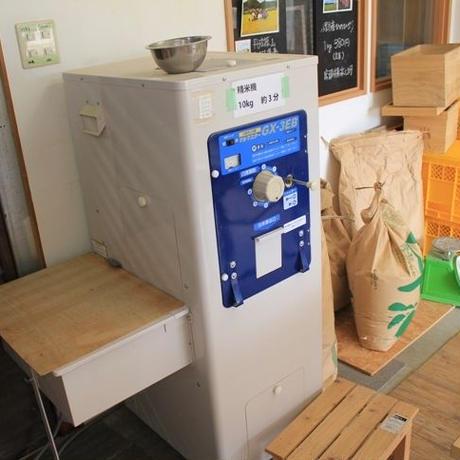 【令和2年産】丹波篠山たぶち農場のこしひかり(特別栽培米) 3㎏【選べる精米】