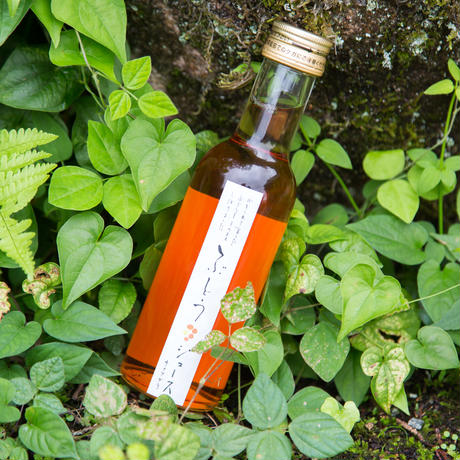 【クリスマスやギフトに最適】まるでノンアルコールのロゼワイン!『森の生活:ナイアガラジュース』(180ml×1本)