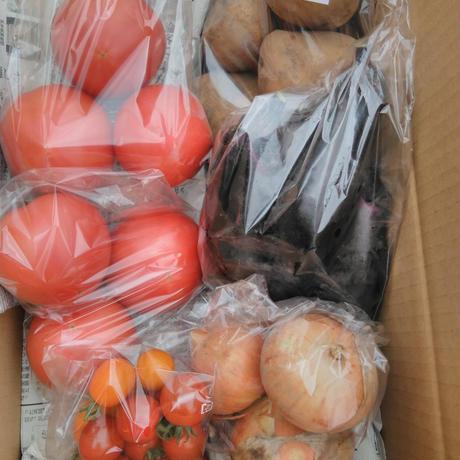 有機JAS ひなた野菜セット(1400円)トマト・ナス・ミニトマト・じゃがいも・タマネギ 送料別