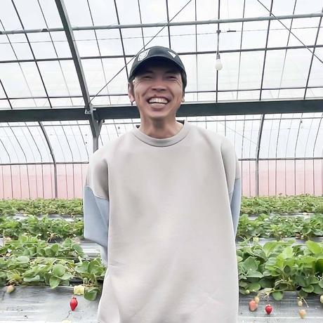 イチゴ 柴田 智昭 さん