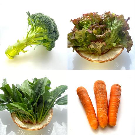 旬の野菜セット(大)