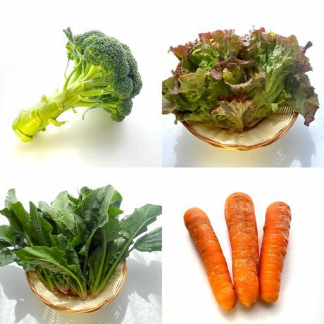 旬の野菜セット(中)  + ブドウ1パック