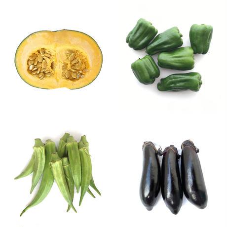 【定期便】旬の野菜セット(中)