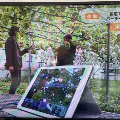 """10月21日(木)22日(金)開催【各種メディアで大反響!!""""オンラインぶどう狩り】"""