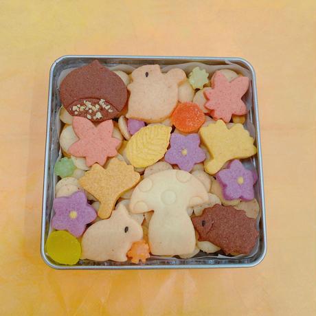 ★期間限定★秋のクッキー缶(四角缶:浅型)