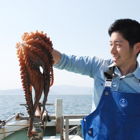 【父の日ギフト・オリジナルサンクスカード付】乾燥わかめ・燻製天然真蛸アヒージョセット
