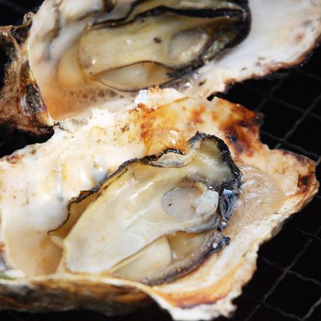 【朝どれ直送】殻付養殖真牡蠣 3kg 加熱用