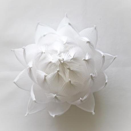 [04]したくや縁  不空の蓮  白蓮(びゃくれん)